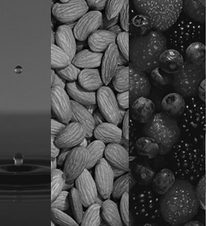 Food_industry